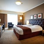 TOP CityLine Hyllit Hotel_Executive Plus room