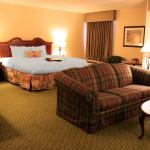 Hampton Inn - Brookhollow