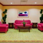 Foto de Holiday Inn Express Hotel & Suites St. Petersburg North I-275