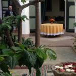 The lemon tree courtyard. And Hassan!