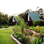 Tsitsikamma Lodge Storms River