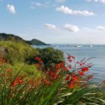 The bay at Whangarai Heads