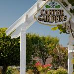Carter House Inns Foto