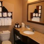 Foto de Hampton Inn Houston - Near The Galleria
