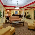 Foto de Holiday Inn Express Hotel & Suites College Square