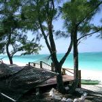Photo of Hollywood Beach Suites Turks and Caicos