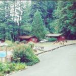 Photo de Jaye's Timberlane Resort