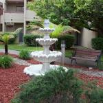 Photo of BEST WESTERN PLUS Wine Country Inn & Suites