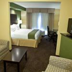 Photo of Holiday Inn Express Hotel & Suites Lansing-Dimondale