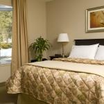 Photo of Quality Inn & Suites Le Versailles