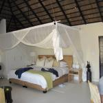 Foto de Lion Sands River Lodge