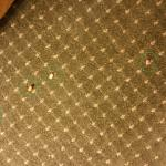 Food and garbage on carpeting