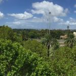 View from balcony to botanic garden
