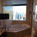 Bathtub overlooking Hudson River