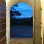 Door leading to outside from Olive Oil tasting