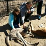 Hands on with the Kangaroo