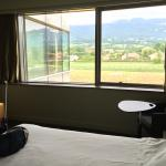 Photo de Ibis Styles Saint Julien en Genevois Vitam