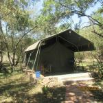 Well accommodated tents