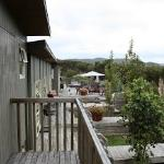 Photo of Longhouse Bed and Breakfast