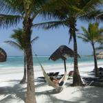 Foto de Grand Palladium White Sand Resort & Spa