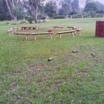 Zona recreativa niños 7 am 07 03 2015