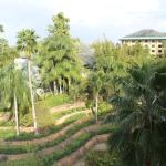 Photo de Loews Royal Pacific Resort at Universal Orlando