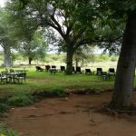 Photo de Mohlabetsi Safari Lodge