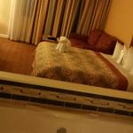 jacuzzi and bed view from closet facing window