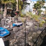 Nautical garden design, by the harbour