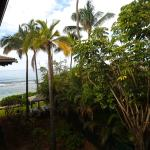 Partial Ocean View Room (#365)