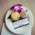 welcome back card/macarons