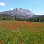 Tours in Provence - Private Day Tours