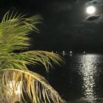 the night from the shore