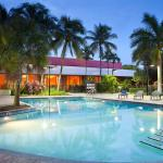 The Miami Airport Marriott has it all, free airport shuttle and resort style pool