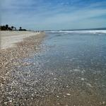 Photo de Edisto Beach State Park