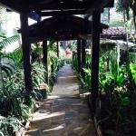 Path from La Casona to the garden
