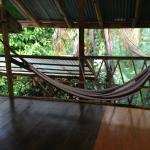 comfy hammocks hanging here and there in good strategic spots