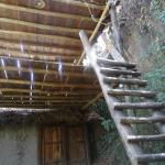 """Ladder up to one of the """"treehouse"""" rooms"""