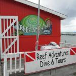 Reef Adventures Belize