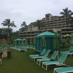 Beach side cabanas and lounge chairs