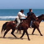 Horseback riding on the beach to