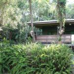 Bild från Chambers Wildlife Rainforest Lodges