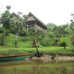 Foto de Yarina Eco Lodge