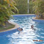 Lagoon style Swimming Pool at Grand West Villas (Nadi)