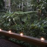 Φωτογραφία: Crystal Creek Rainforest Retreat