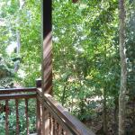 Rainforest chalet balcony