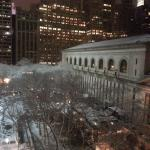 Bryant Park & the Public Library from the room