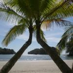Our private beach; wish you were here!