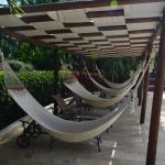 Hammocks by the pool
