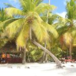 Photo of Isla Saona